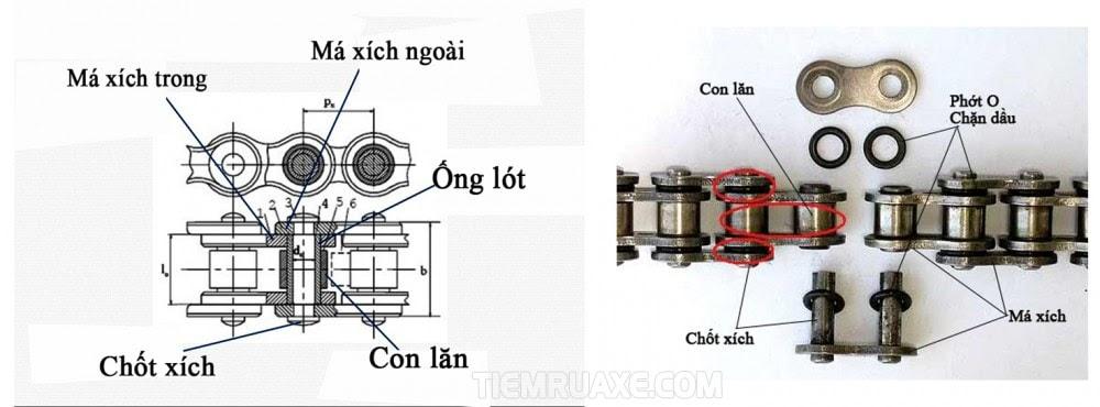Cấu tạo của bộ phận dây sên