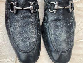 giày bị mốc